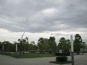 wpc-1.jpg